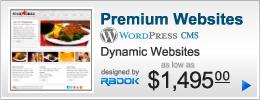 Dynamic Websites